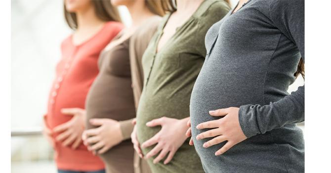 hamil muda